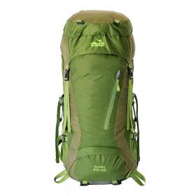 Рюкзак туристический Tramp Floki 50+10 (зеленый)